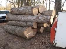 White Oak Wunderwoods