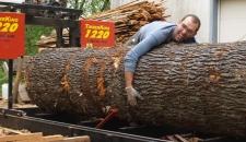 Scott hugging cherry log WunderWoods