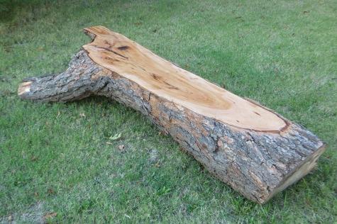 Outdoor Natural Pecan Wood Bench 2